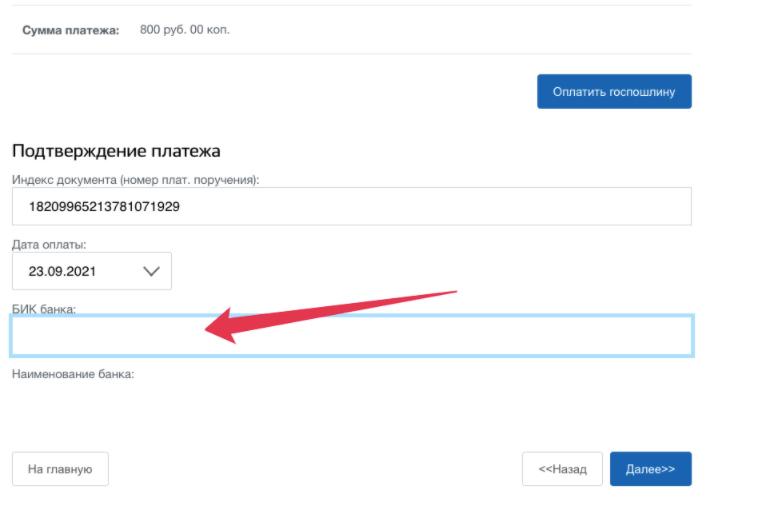 Пошаговая инструкция по открытию ИП на портале Госуслуг